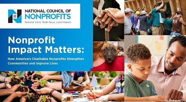 national council nonprofit report.png
