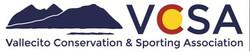 VCSA Logo
