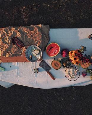 Luchtfoto van de Picknick