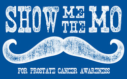 Show-Me-the-Mo-new-banner