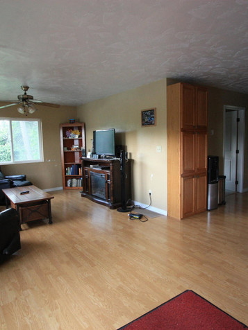 Main Kitchen and Living room .jpg