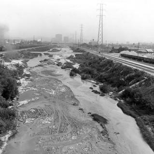 Los Angeles River before it was paved.