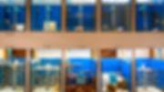 ReefFish Growlab.jpg