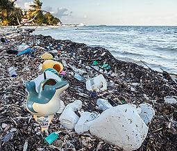 caribb beach trash2.jpg