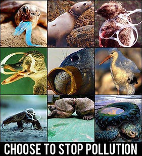Plastic Impact.jpg