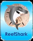 ReefShark.png