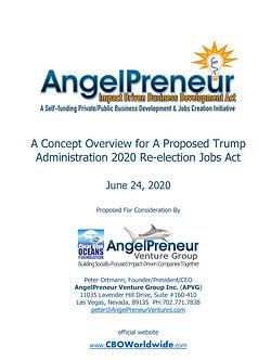 AngelPreneur ACT Program-1.jpg