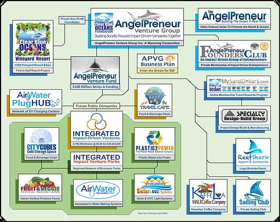 APVG Biz Chart 2020 v3.png