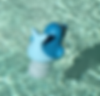 Pool Porpoise.png