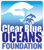 CBO Foundation logo.png