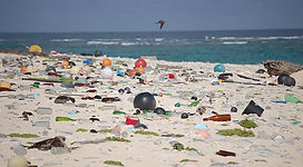 TPF Beach Trash.jpg
