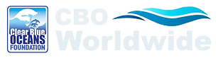 CBO Worldwide white logo.png