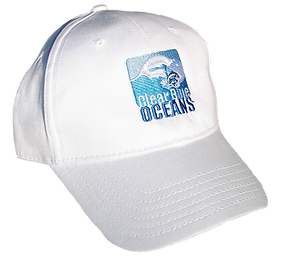 CBO Hat.png