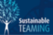 Long-term team building solutions with Sabre's Sustainable Teaming approaches