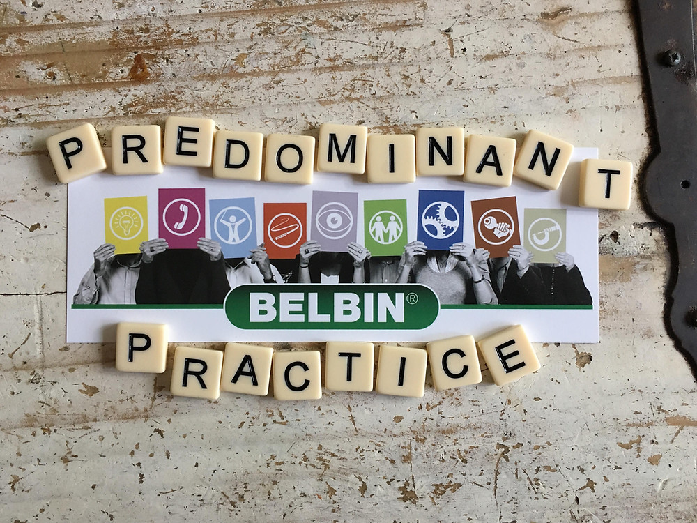 The Belbin Team Role Model is a respected behavioural profiling tool