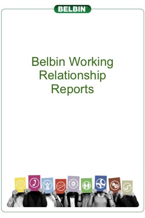 Working Relationship Report (between 2 people)