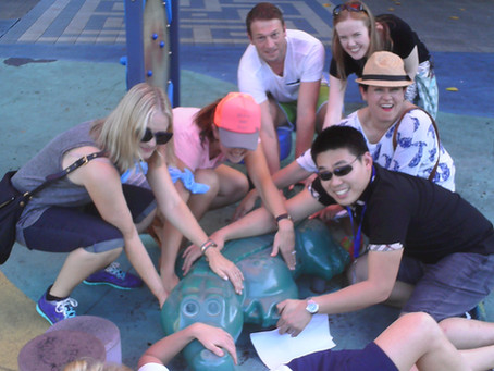Team Building in Cairns with Pfizer