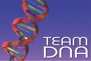 Team Building with Team DNA