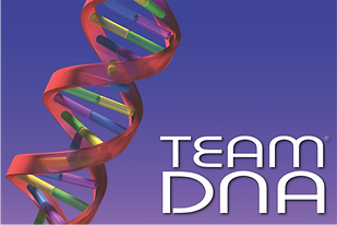 The logo for Sabre's exclusive Team DNA programmes