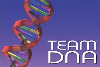 Team DNA team building in Sydney