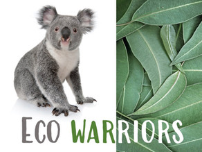 'Eco Warriors' is a team challenge that helps save species and the environment