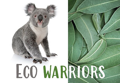 Eco Warriors New Logo.jpg