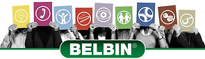 Team Building Brisbane with distinction using the Belbin profiles and reports