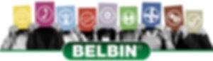 BELBINUK - Team Role Headshots with logo