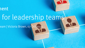 Belbin for leadership teams