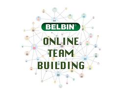 BELBIN ONLINE TB.png