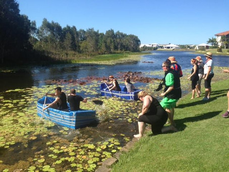 Sunshine Coast team building at The Sebel Pelican Waters