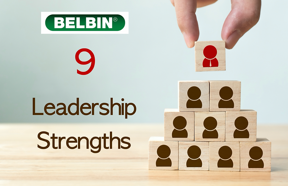 Belbin Leadership Strengths.png