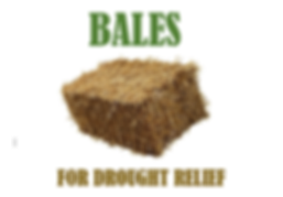 Hay Bales for Drought Relief Sabre Team