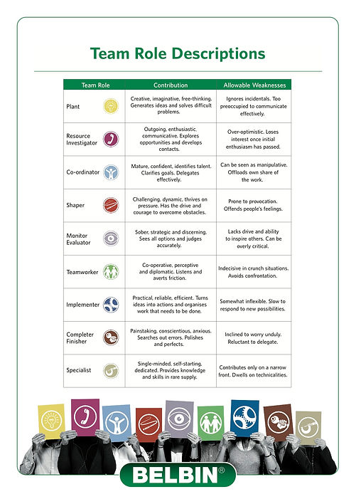 Belbin's 9 Team Roles for team building and leadership development