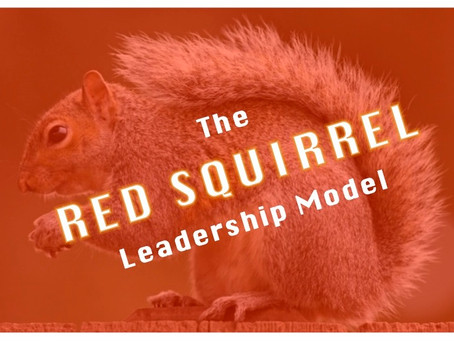 The Several Habits of The Red Squirrel Who Ate My Cheese