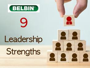 9 Strengths of Leadership