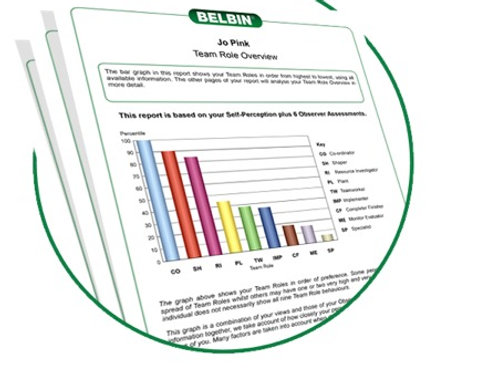Belbin Individual Profile - Done Online / Link Emailed To You