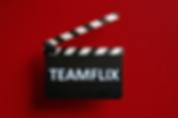 TEAMFLIX LOGO.png