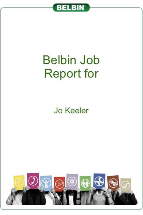 Belbin Job Comparison Report