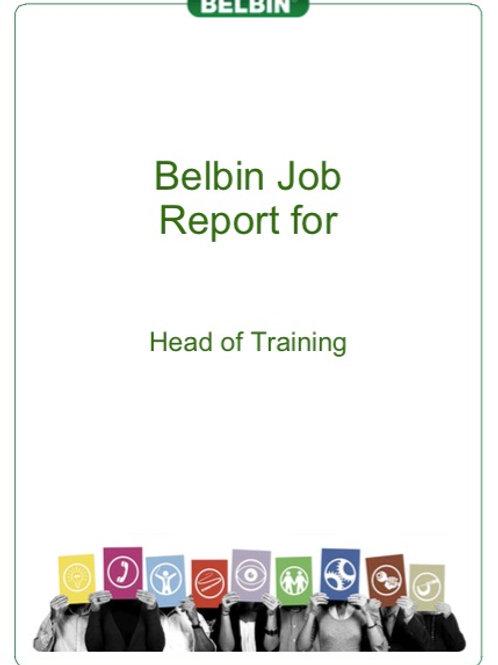 Belbin Job Report / Job Requirements Exercise