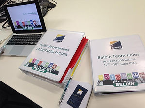 Sabre is an official Belbin Australia Rep