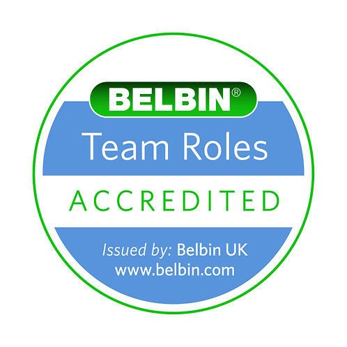 Accredited User Special Rate - INDIVIDUAL BELBIN PROFILE