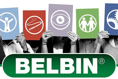 Full Belbin e-Interplace 7 System