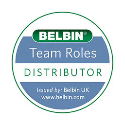 Sabre is Distributor for Belbin behavioural profiling Australia