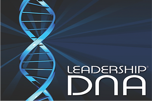 High end leadership development by Sabre with Leadership DNA