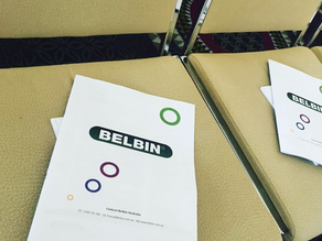 Introduction to Belbin for 100 QLD Health Professionals