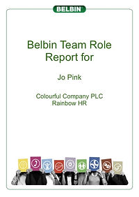 Belbin Team Role profiles for team buiding