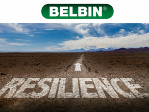 Building Team Resilience
