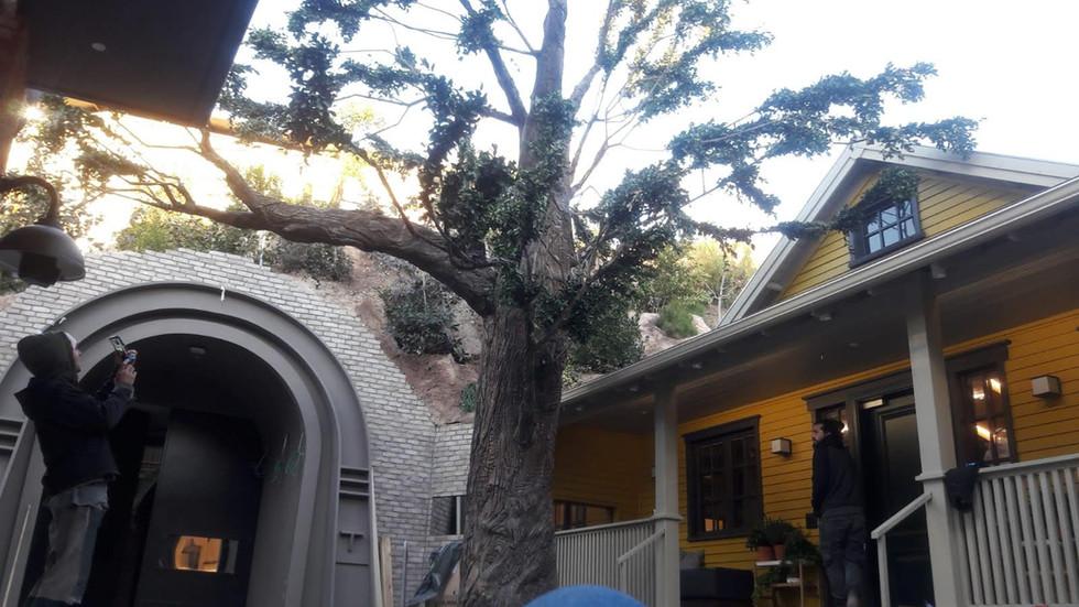 tree 18.jpg