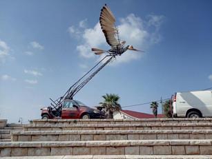Mechanical bird with car